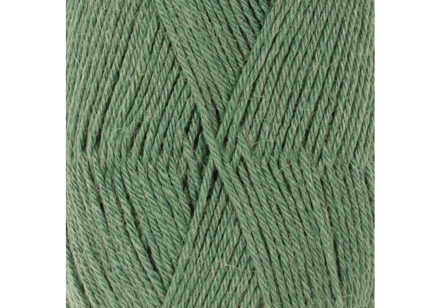 Nord_lesní zelená