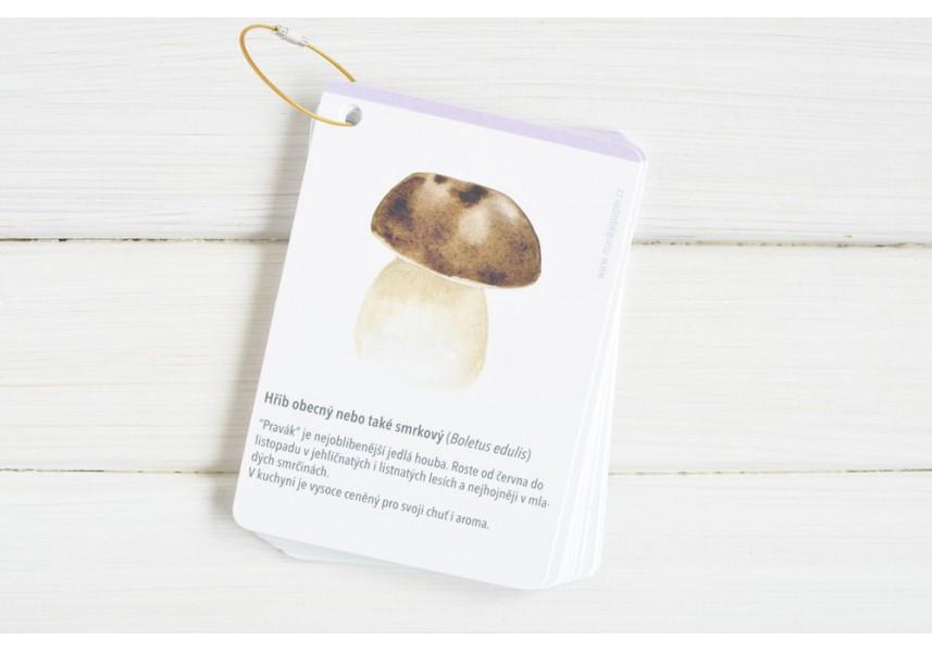 Poznávací kartičky do přírody HOUBY