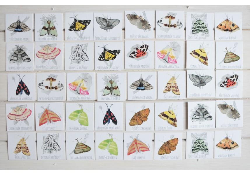 Pexeso Motýli I.