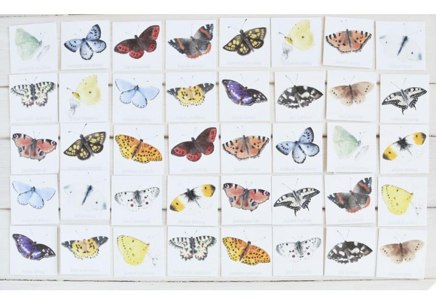 Pexeso Motýli II.