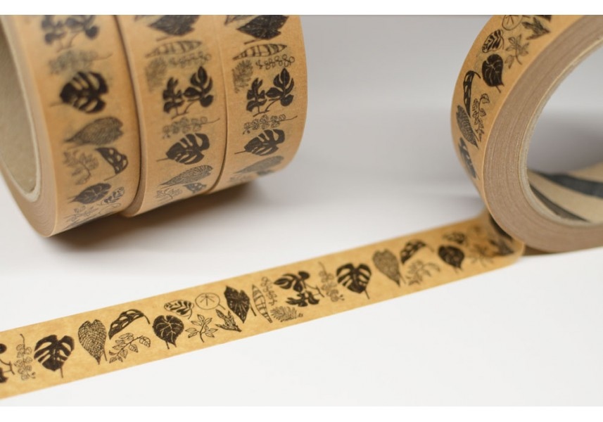Hnědá papírová páska Pokojovky